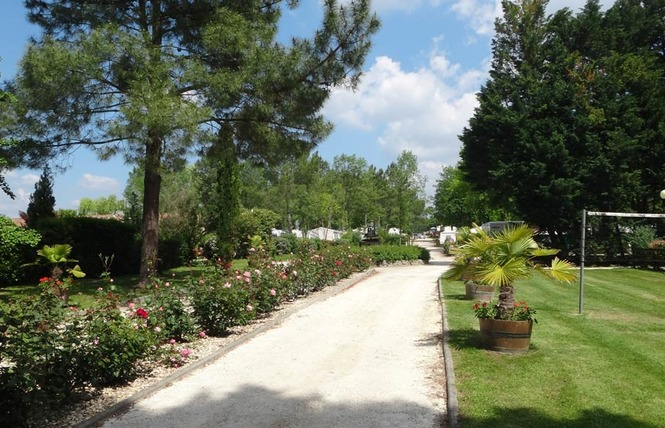 Camping le Pressoir 20 - Petit-Palais-et-Cornemps