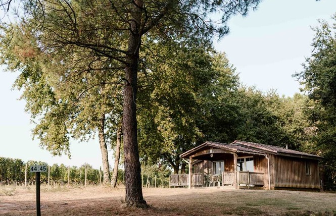 Camping Chez Gendron 8 - Saint-Palais