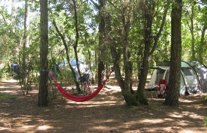 Camping de l'Ermitage 11 - Lacanau