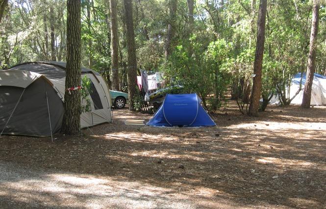 Camping de l'Ermitage 10 - Lacanau