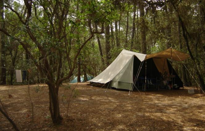 Camping de l'Ermitage 6 - Lacanau