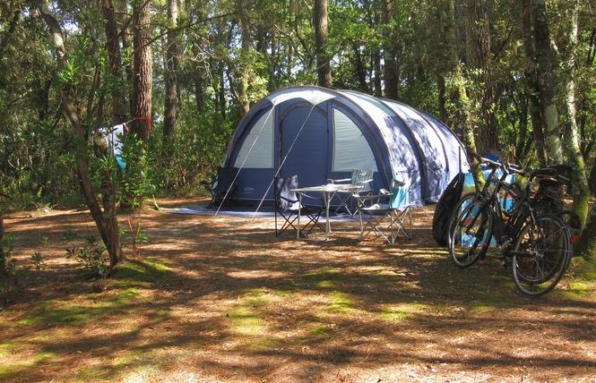 Camping de l'Ermitage 4 - Lacanau