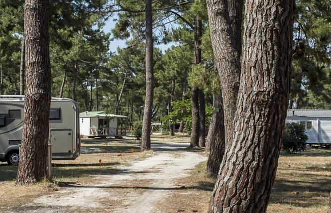 Camping municipal de l'Océan 1 - Vendays-Montalivet