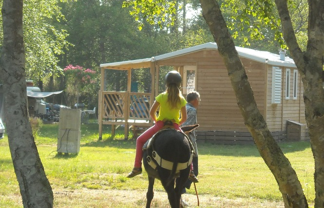 Camping Les Fougeres Lacanau 17 - Lacanau