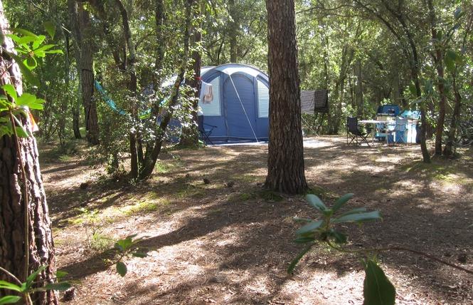 Camping de l'Ermitage 7 - Lacanau