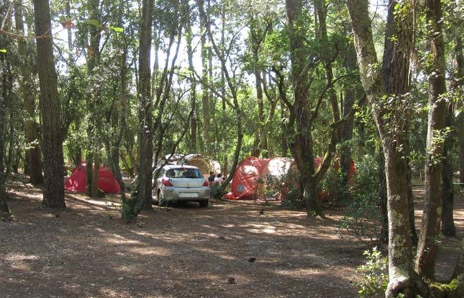 Camping de l'Ermitage 5 - Lacanau