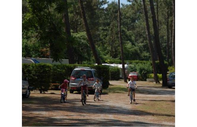 Camping Les Goelands 5 - Arès