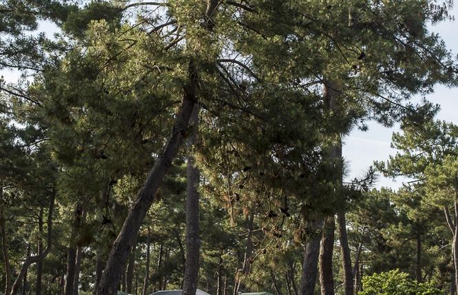 Camping municipal de l'Océan 7 - Vendays-Montalivet