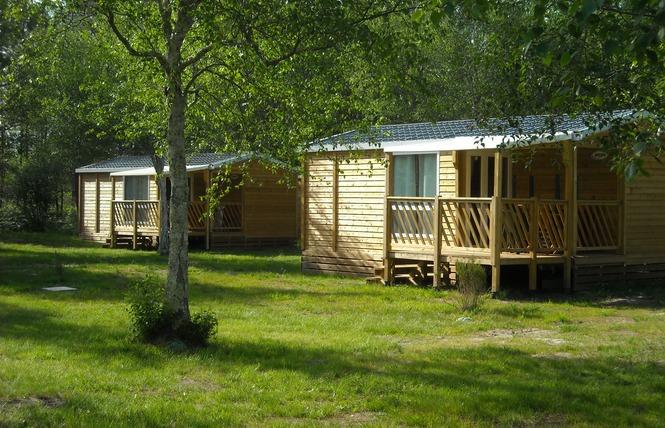 Camping Les Fougeres Lacanau 15 - Lacanau